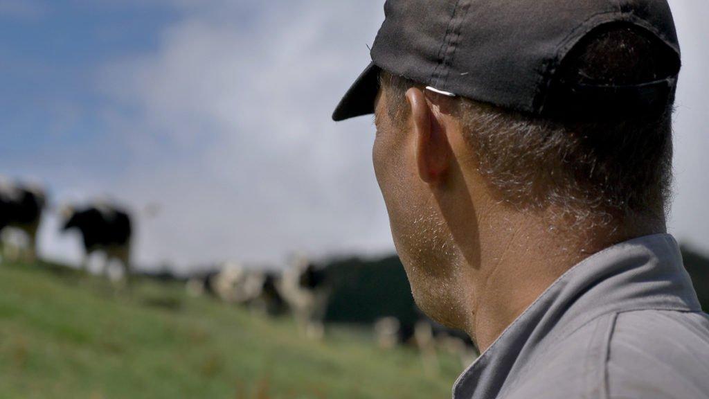 Un éleveur de vache qui est dans la prairie