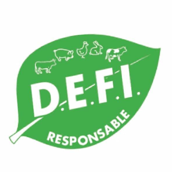 Image DEFI responsable
